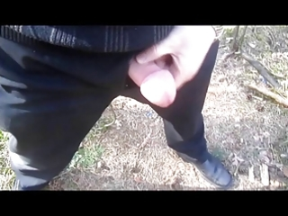 older daddy jacking off outdoor
